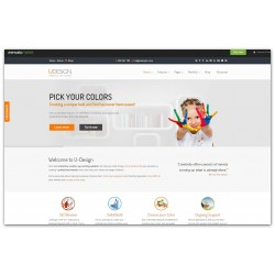WordPress U-Designe - Premium