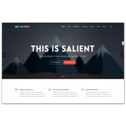 WordPress Salient Responsive Multi-Purpose Premium