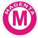 Epson Photo (Magenta)